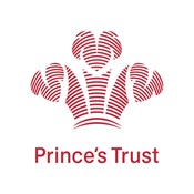 princes-trust-cmyk-for-printing